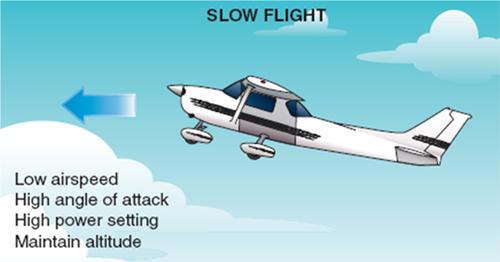 Slow Flight. Image courtesy of gauravteneja.com.